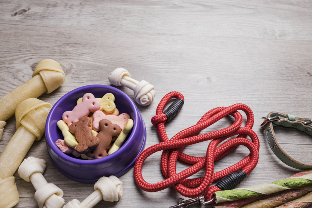 dog snacks collar and rope on floor 23 2147828956 - 4 things to consider before deciding on the type of dog to breed